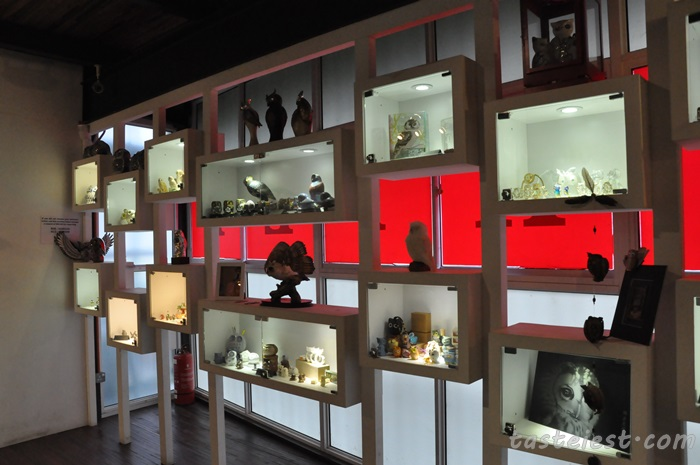 Penang Hill Owl Museum
